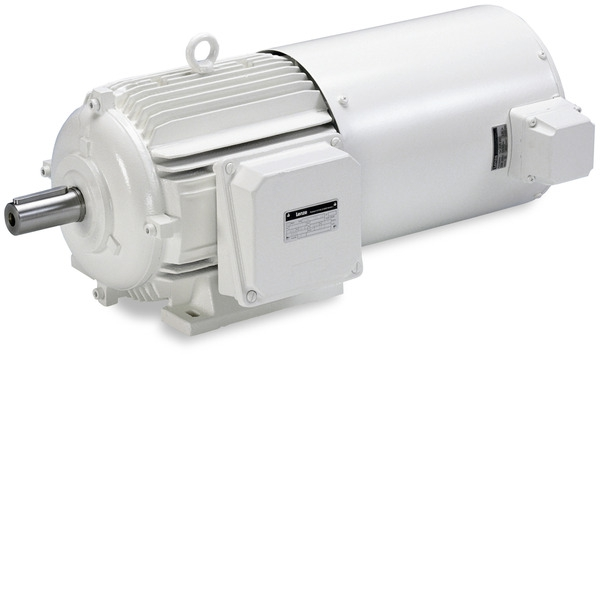 MGFRK DC motors