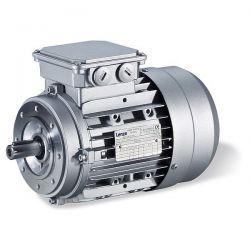 Các loại motor phổ biến